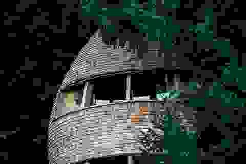 Kỳ lạ ngôi nhà treo mình giữa rừng cây, khách muốn vào phải đi bằng cầu