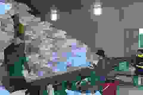 Phân bổ gần 900 tấn gạo hỗ trợ người dân thời điểm giáp hạt