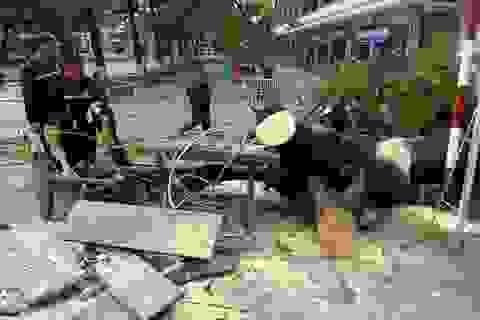 Sau cơn mưa lớn, một cây phượng bị bật gốc trong sân trường