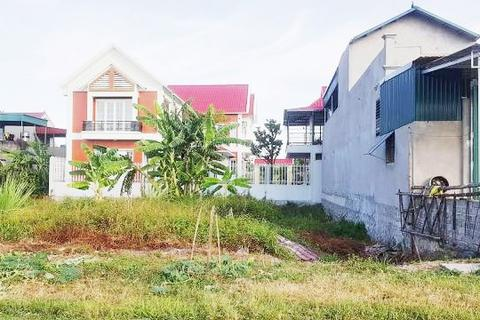 Bí thư tỉnh Ninh Bình chỉ đạo thu hồi đất cấp khống cho nguyên chủ tịch xã