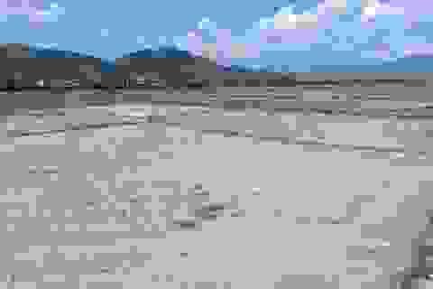 Khánh Hòa hỗ trợ gạo cứu đói cho hơn 85.000 người do hạn hán