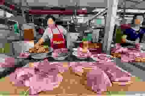 Giá lợn tiếp tục tăng: Ai đang thao túng?
