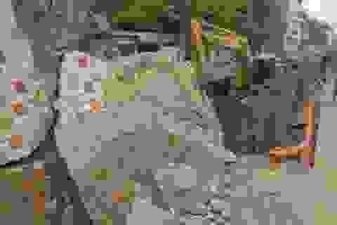 Con đường gốm sứ ven sông Hồng bị phá dỡ 600m, chuyên gia nói gì?