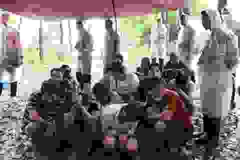 Đột kích sòng bạc trong vườn cao su, bắt giữ 60 người