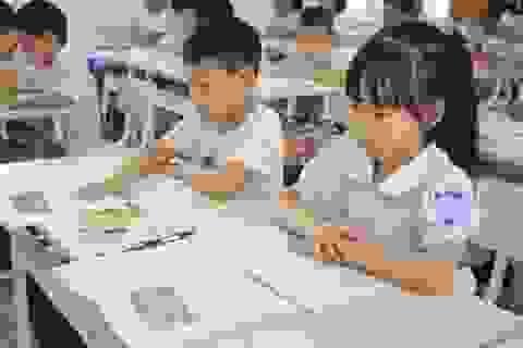 Ninh Bình: Lựa chọn 3 bộ sách giáo khoa lớp 1 chương trình mới