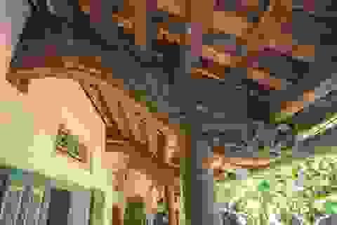 """Nhà 5 gian bằng gỗ lim nguyên khối của thợ may """"đệ nhất"""" Hà Thành xưa"""