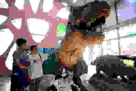 Giới trẻ thích thú mô hình khủng long, người sói có thể chuyển động