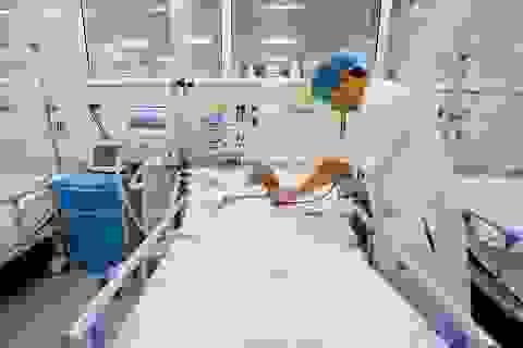 Bệnh viện Trung ương Huế đạt giải thưởng của Hội Đột quỵ Thế giới