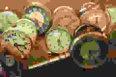 Bộ sưu tập đồng hồ cổ, có khả năng dự báo... bão tại Hà Nội