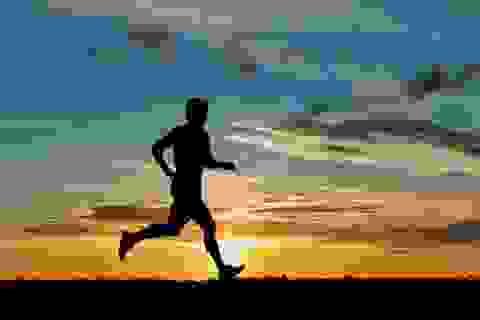 Con người có thể chạy nhanh đến mức nào?