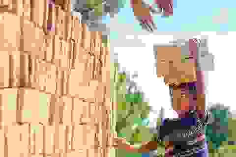 Cảnh báo hơn 150 triệu lao động trẻ em trên toàn cầu
