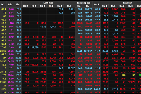 """Đổ gần 12.000 tỷ đồng """"săn cổ phiếu"""" giữa lúc thị trường chứng khoán """"rơi"""""""