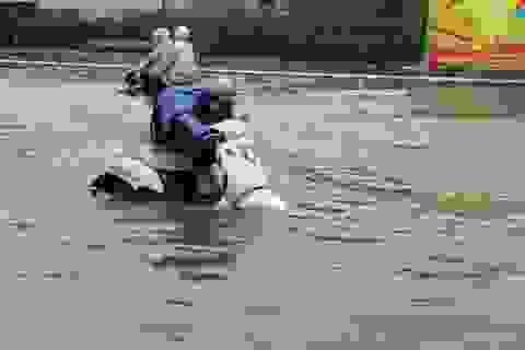 Cây đổ đè chết người, nước bủa vây trong cơn mưa tầm tã