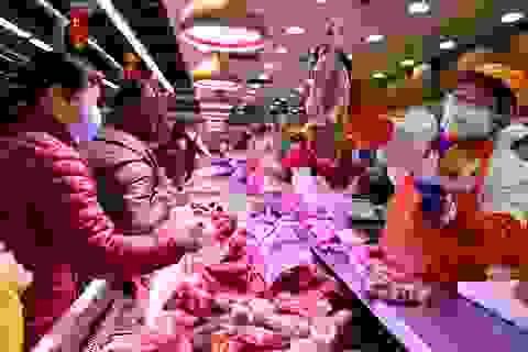 Chuyên gia: Giàu to nhờ xuất khẩu thịt lợn sang Trung Quốc