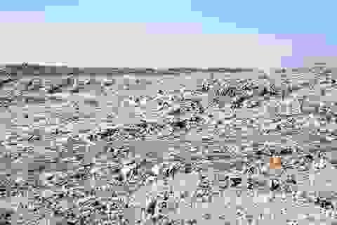 Lại phát hiện xác thai nhi lẫn trong rác thải