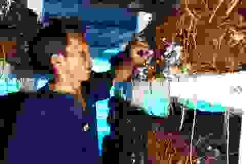 Gặp cựu chiến binh kiếm hàng trăm triệu đồng từ trồng nấm rơm