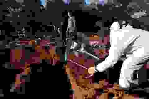 Thành phố Brazil khẩn cấp bốc mộ cũ lấy chỗ chôn nạn nhân Covid-19