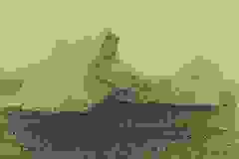 """""""Chân dung"""" tảng băng trôi khiến tàu Titanic bị chìm"""