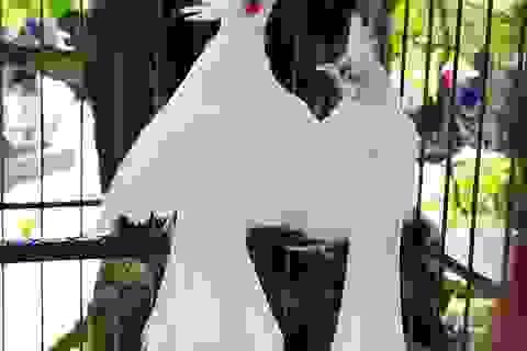 """Siêu phẩm chim cảnh """"cực độc"""" của đại gia Hà Nội, trả nửa tỷ đồng một con cũng không bán"""