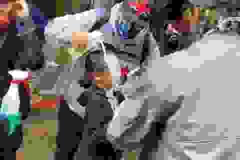 Cảnh sát Mỹ gây phẫn nộ vì xịt hơi cay vào trẻ em trong biểu tình