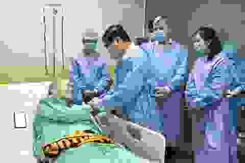 """""""Cứu sống phi công nhiễm Covid-19 là niềm tự hào của Việt Nam"""""""