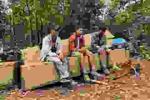Vận chuyển gỗ từ rừng nguyên sinh, nhóm lâm tặc bị bắt tại trận