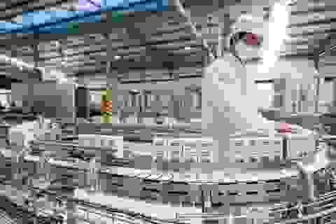 """Vinamilk """"mở lối"""" cho ngành sữa Việt vào 5 nước thuộc EAEU"""