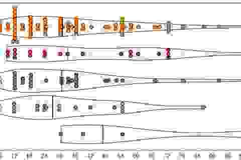 Miễn dịch Covid-19 thực sự tồn tại trong bao lâu?