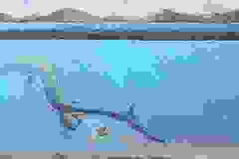 Lần đầu tiên phát hiện trứng của bò sát biển cổ đại