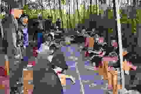 Phá sòng bạc, bắt giữ 28 đối tượng ở rừng keo