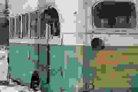 """Di dời """"chiếc xe buýt diệu kỳ"""" từng gây nên cái chết của hai du khách"""