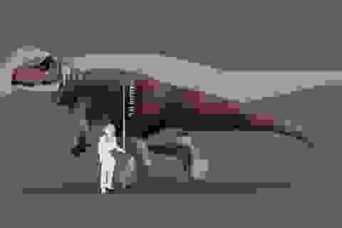 Phát hiện dấu chân của loài khủng long mới chưa từng được biết đến
