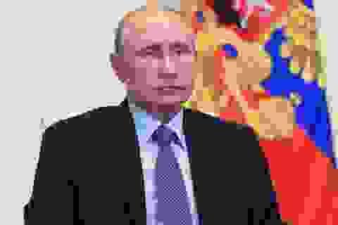 Ông Putin có thể tranh cử tổng thống lần thứ 5