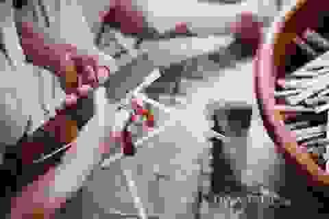 Hà Nội: Làm nghề này tay chằng chịt sẹo nhưng thu gần 20 triệu mỗi tháng