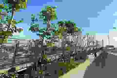 """Đường sắt trên cao bỏ hoang ở Bangkok được """"hô biến"""" thành công viên"""
