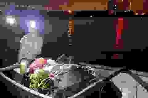 """Dậy từ 2 giờ hái rau bí, """"bà trùm""""kiếm tiền triệu nơi bãi giữa sông Hồng"""