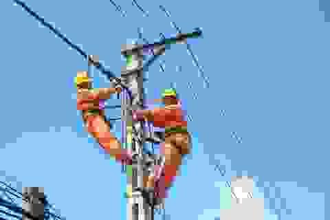 Phó Giám Công ty Điện lực Quảng Bình bị đình chỉ công tác