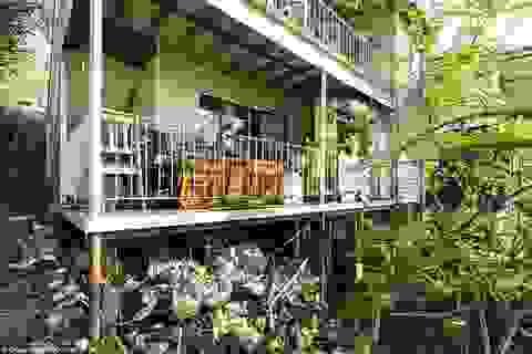 """Những nhà cũ """"không ai mua"""", không ngờ qua vài năm tăng giá gấp cả trăm lần"""