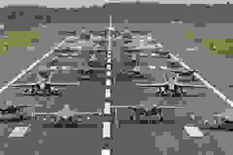 """31 máy bay quân sự Mỹ - Nhật phô diễn uy lực trong tập trận """"Voi đi bộ"""""""