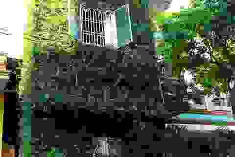 """Độc đáo nhà 3 tầng phủ kín cây xanh của """"dị nhân"""" chơi cây nổi tiếng"""
