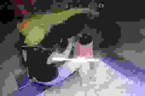 """Clip """"mẹ mải điện thoại, để con bị kẹt tay vào thang máy"""" nổi bật tuần qua"""