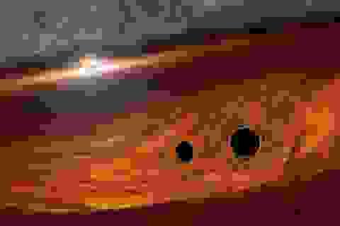 Khoa học phát hiện tia sáng từ các hố đen khi va chạm bằng cách nào?