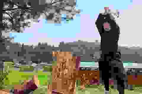 Trường đại học Nhật Bản đầu tiên trao bằng thạc sĩ... ninja
