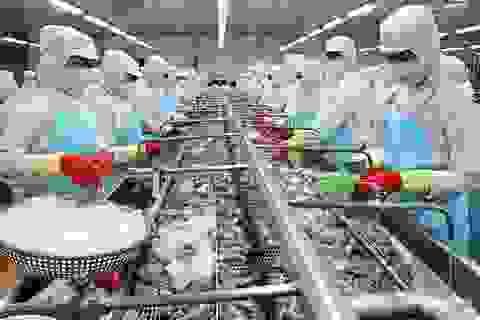 """Vị thế thương mại lớn dần, Việt Nam cần thay đổi """"cách chơi"""""""