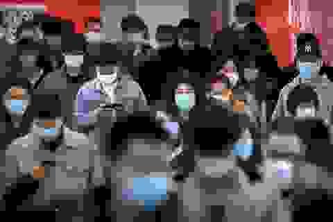 """Hệ miễn dịch có thể """"nhớ"""" được virus corona không?"""