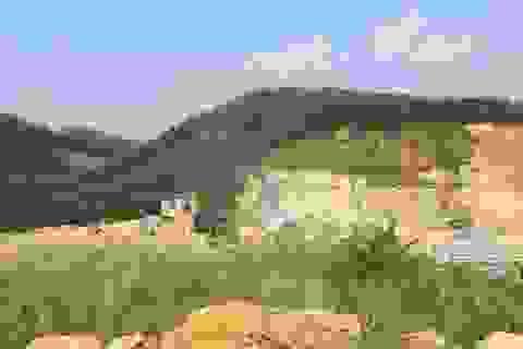 """Đề nghị Bộ Công an chỉ đạo kiểm tra vụ án """"hủy hoại tài sản"""" ở Bắc Giang"""