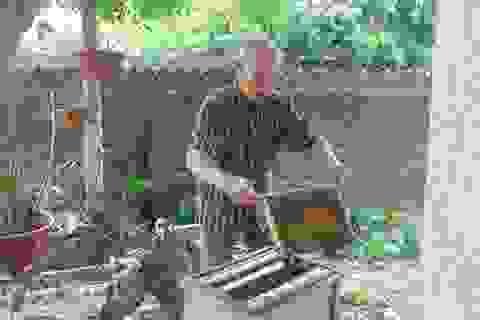 Thái Nguyên: U80 nuôi ong cho vui, ai ngờ tạo nên cả cơ nghiệp lớn