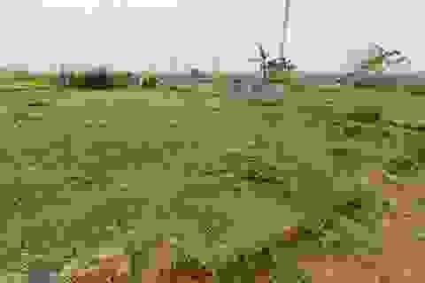 """Ôm mộng giàu nhanh nhờ buôn đất: Vợ chồng Hà Nội 9 năm """"còng lưng"""" trả nợ"""