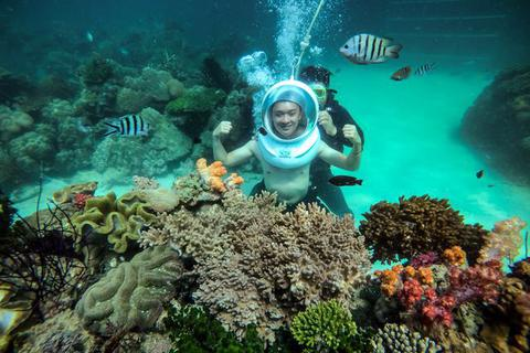 Đi bộ dưới biển, ngắm rặng san hô rực rỡ sắc màu tại Phú Quốc