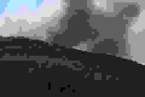 Đang cháy rừng dữ dội tại huyện Tĩnh Gia